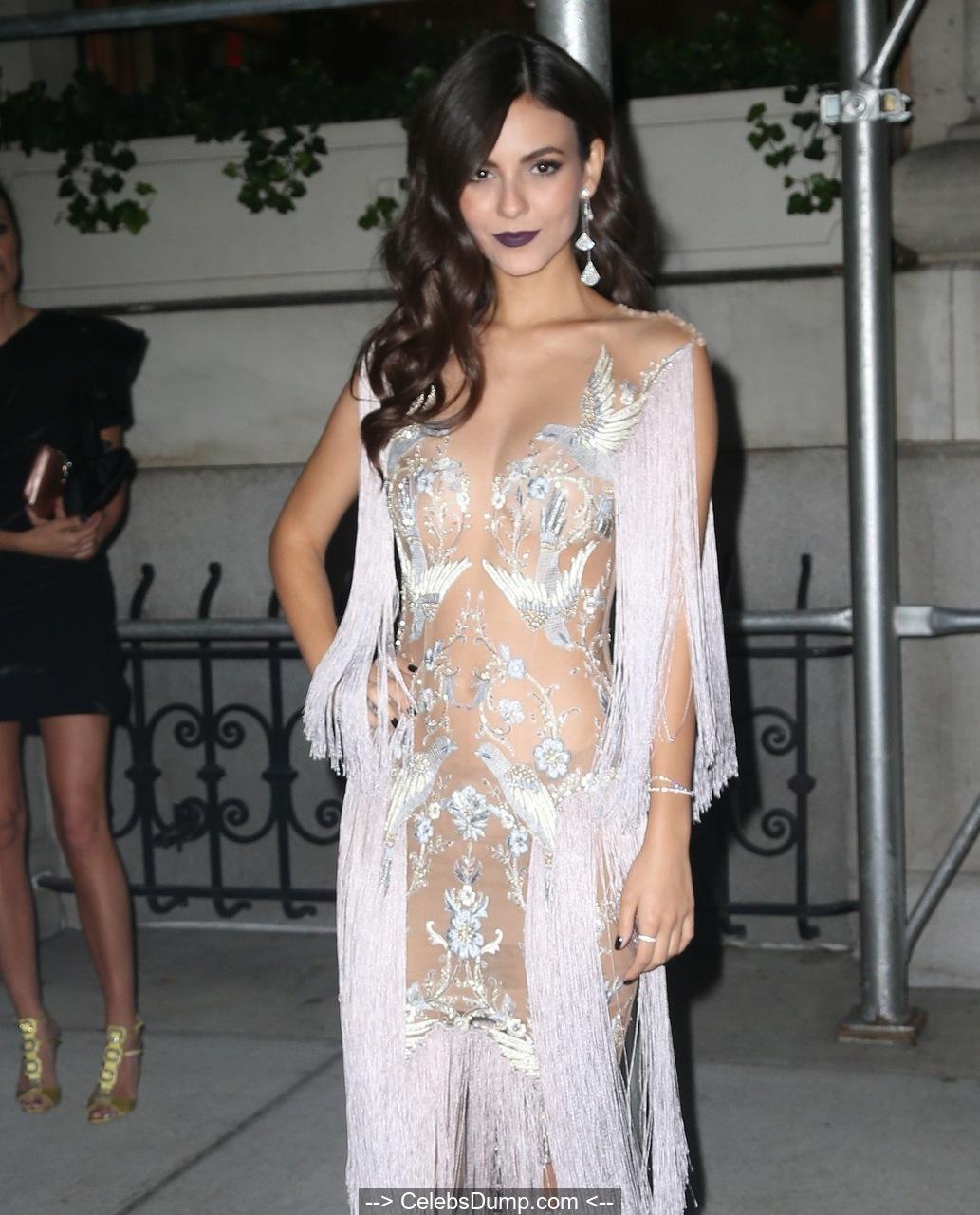 Sayesha saigal sexiest images amp photo galleryvanamagan actress hot stills