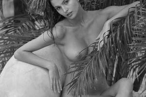 Nackt Tatiana Platon  ABOUT —