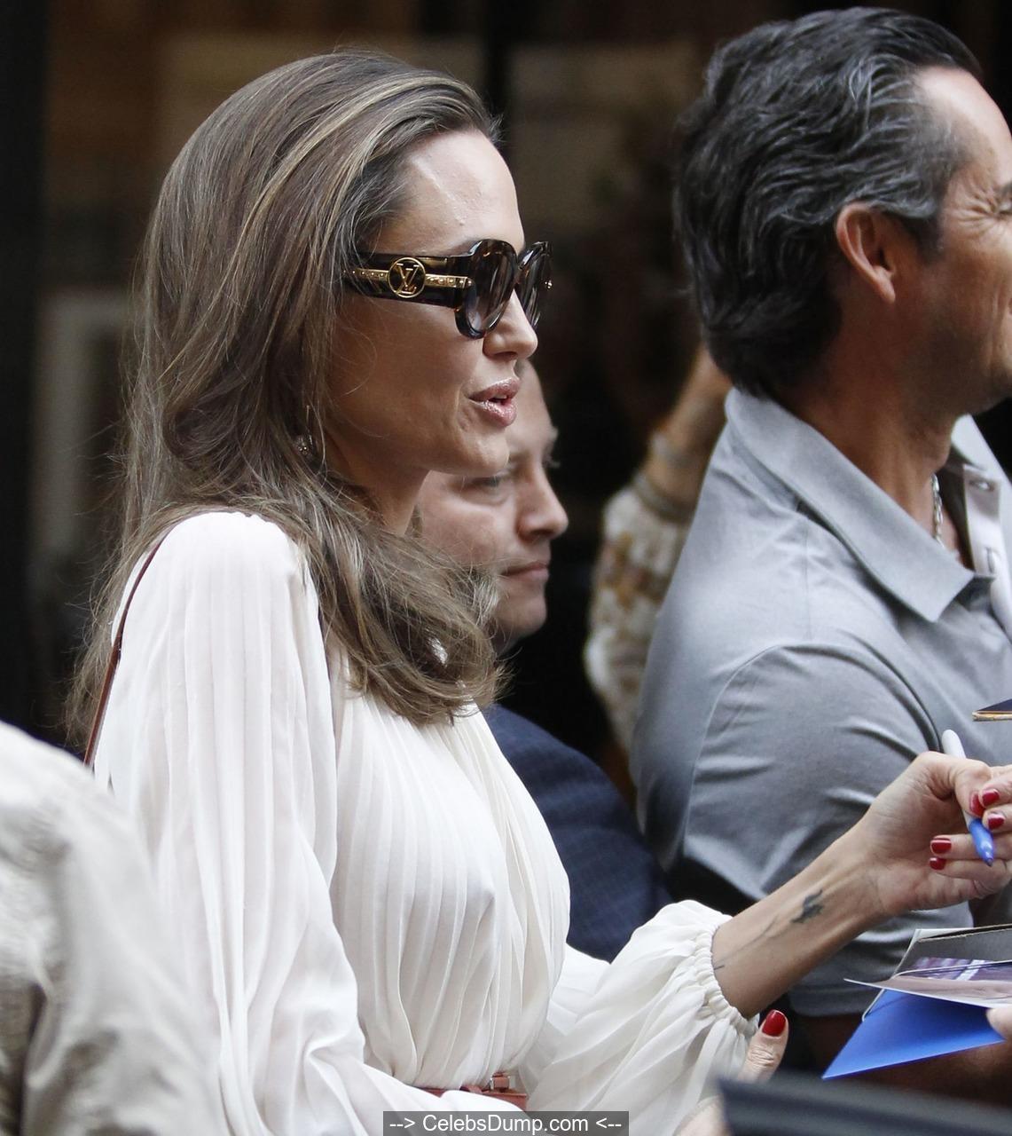 Nipples angelina jolie Angelina Jolie